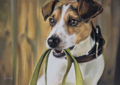 Beau door Genevieve Lumeij, Fine Art. Portret tekening met pastelpotlood of pastelkrijt