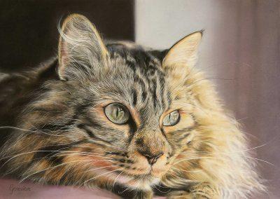 Tygo door Genevieve Lumeij, Fine Art. Portret tekening met pastelpotlood of pastelkrijt